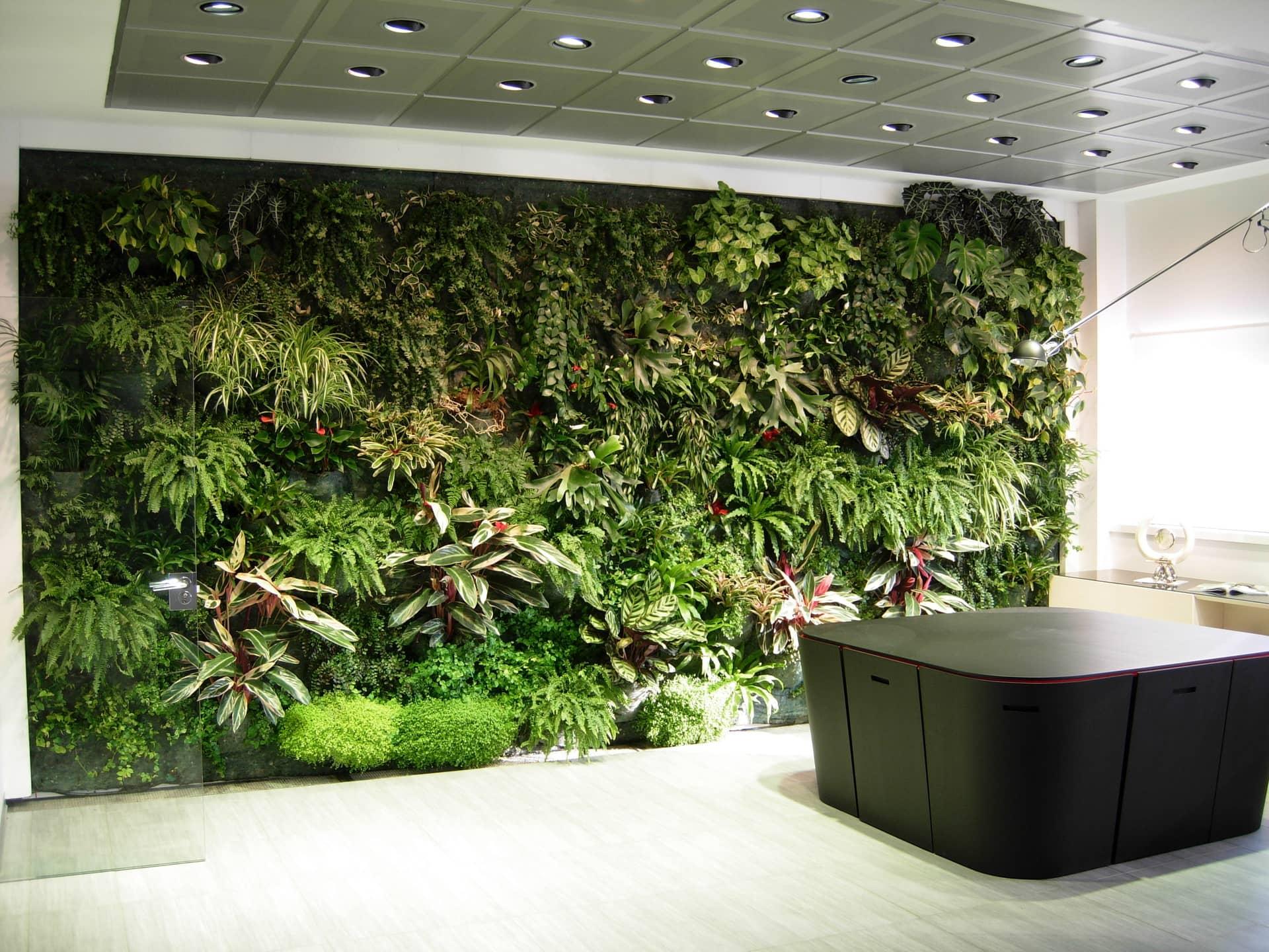 Ufficio In Giardino : Giardini verticali giardino tropicale divomi design vivo milano
