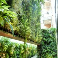 Giardino verticale. Pisa orologeria, Milano
