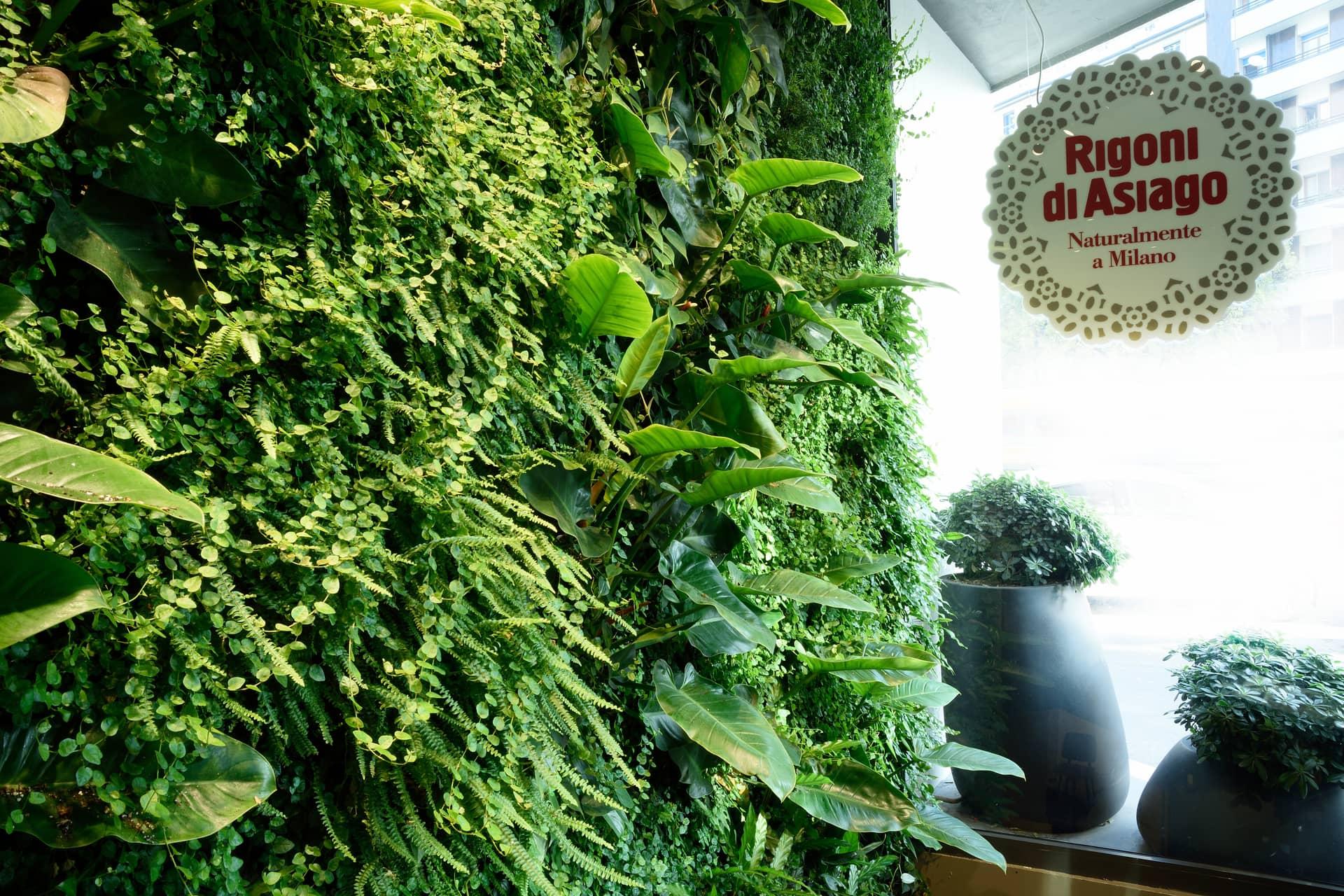 Giardini verticali rigoni di asiago divomi design vivo for Giardini verticali milano